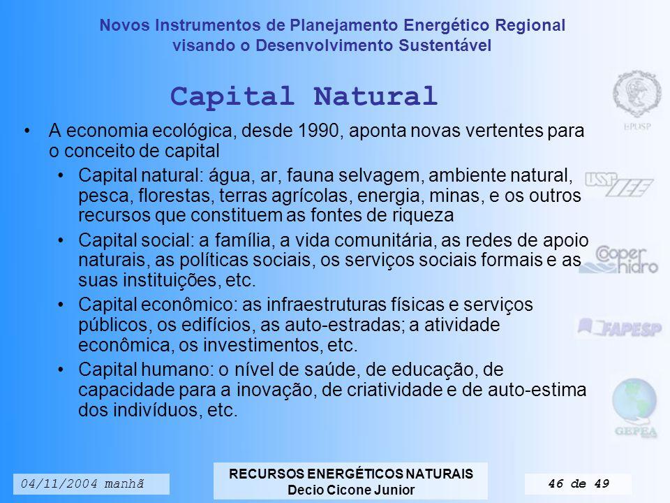 Capital Natural A economia ecológica, desde 1990, aponta novas vertentes para o conceito de capital.