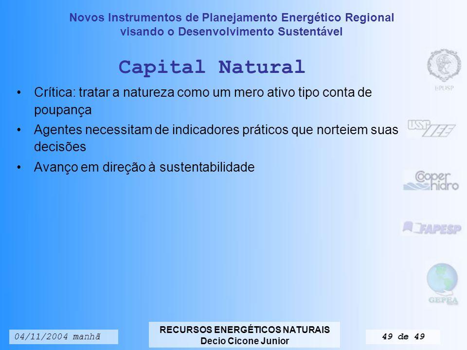 Capital Natural Crítica: tratar a natureza como um mero ativo tipo conta de poupança.