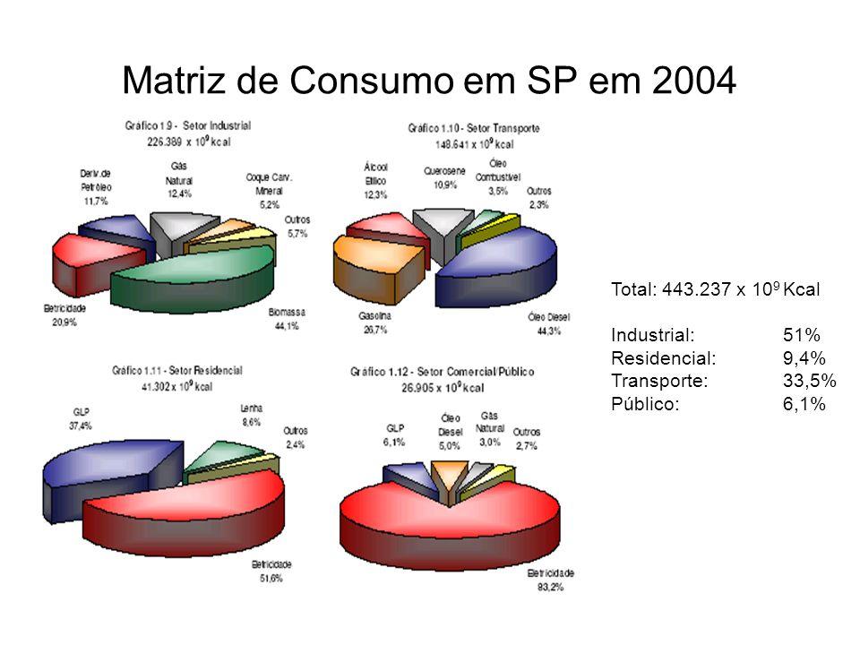 Matriz de Consumo em SP em 2004