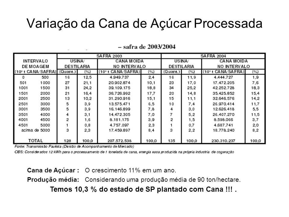 Variação da Cana de Açúcar Processada