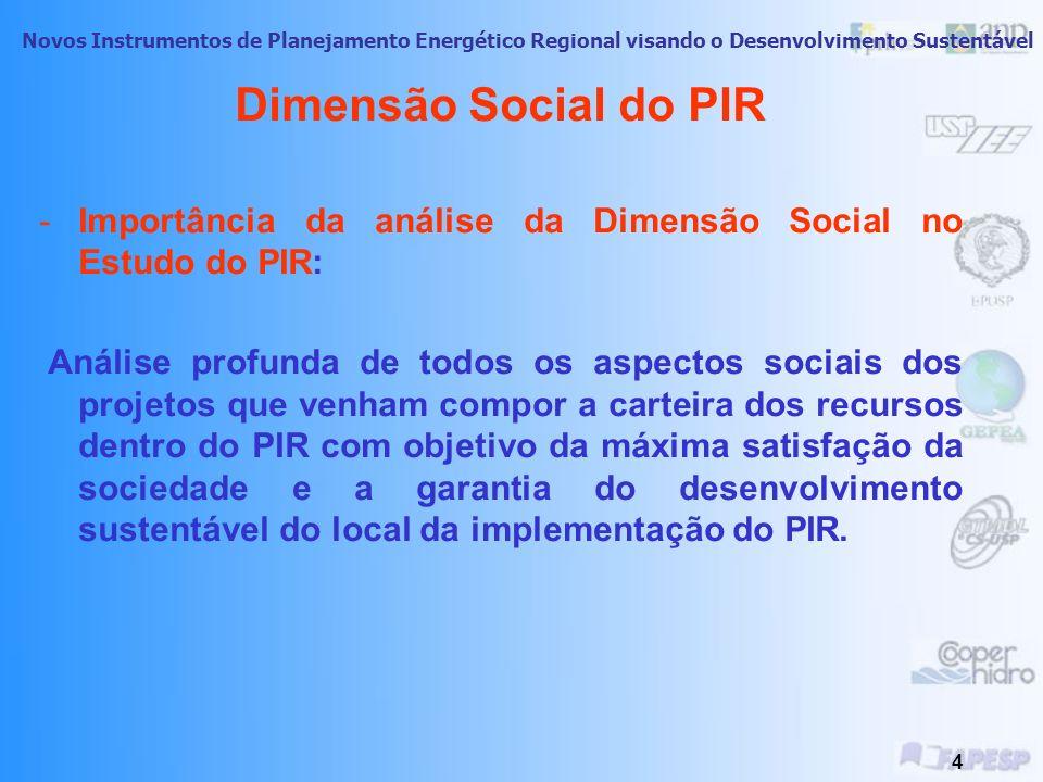 Dimensão Social do PIR Importância da análise da Dimensão Social no Estudo do PIR: