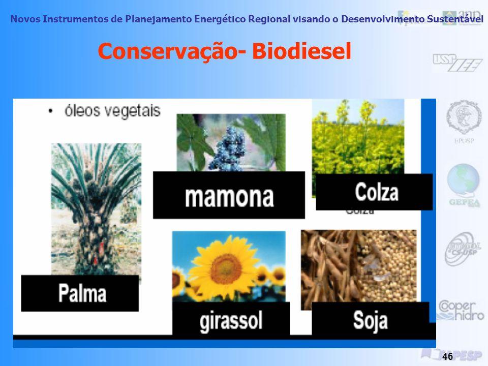 Conservação- Biodiesel