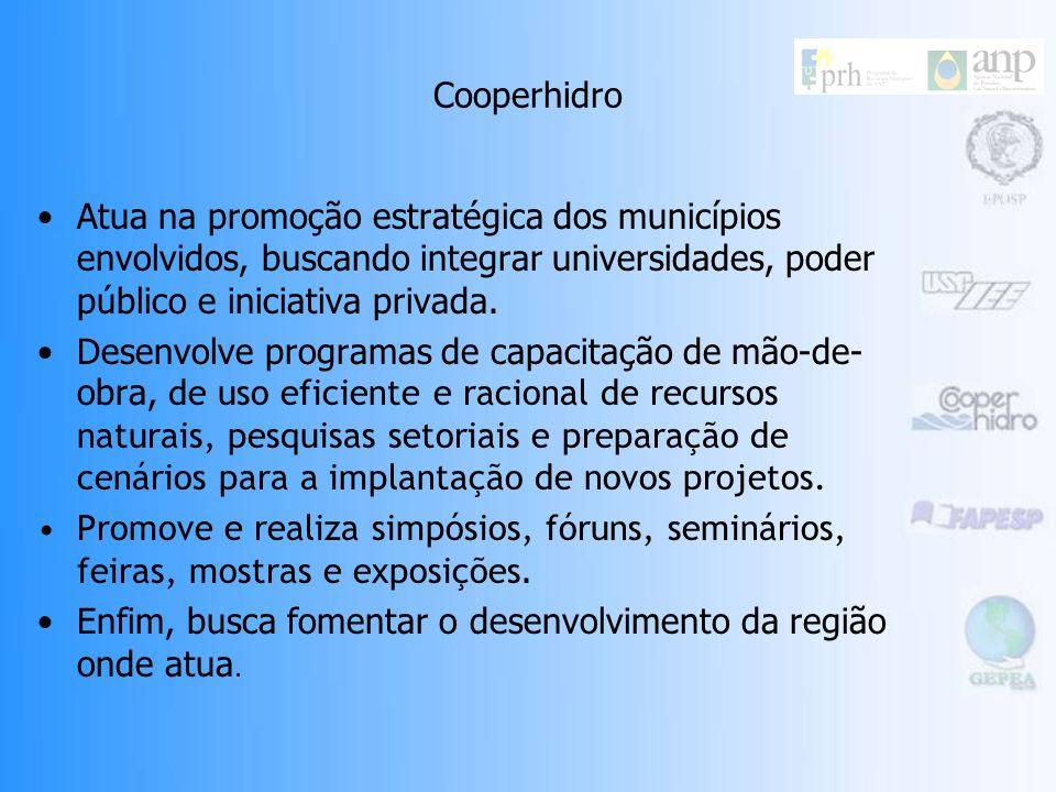 Cooperhidro Atua na promoção estratégica dos municípios envolvidos, buscando integrar universidades, poder público e iniciativa privada.