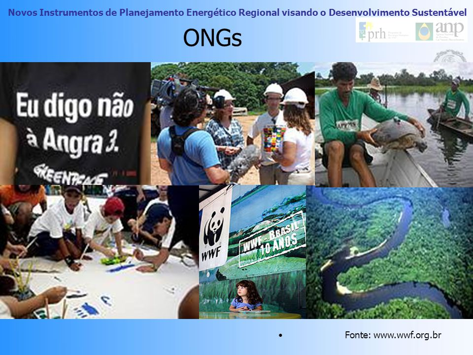 ONGs Fonte: www.wwf.org.br