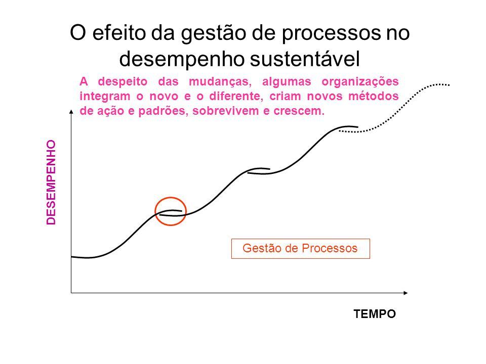 O efeito da gestão de processos no desempenho sustentável