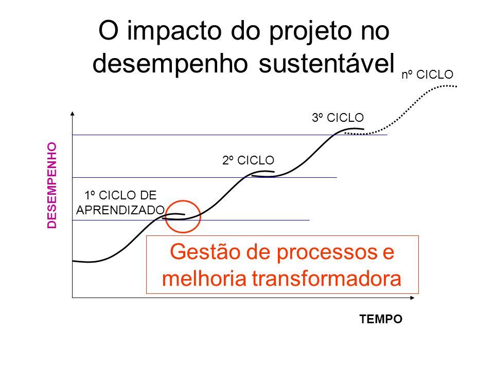 O impacto do projeto no desempenho sustentável