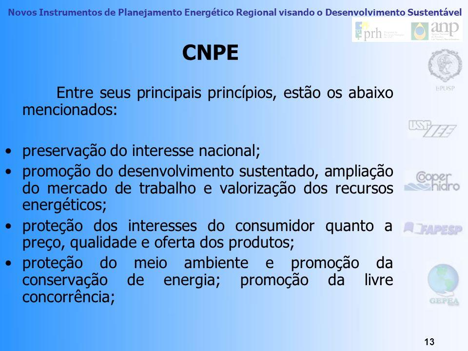 CNPE Entre seus principais princípios, estão os abaixo mencionados: