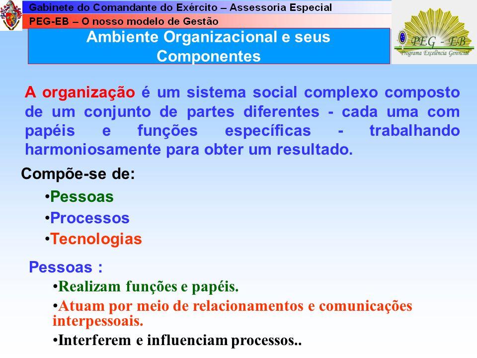 Ambiente Organizacional e seus Componentes