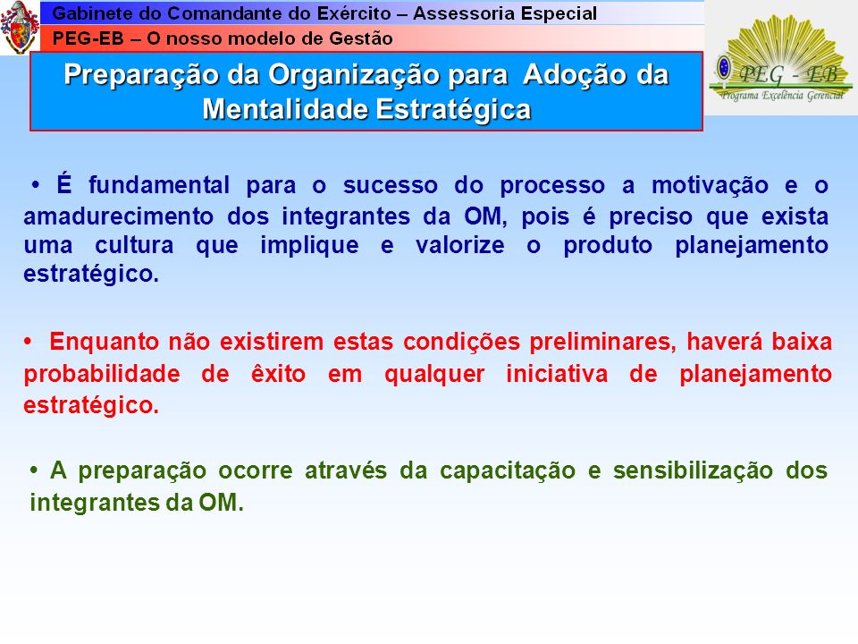 Preparação da Organização para Adoção da Mentalidade Estratégica