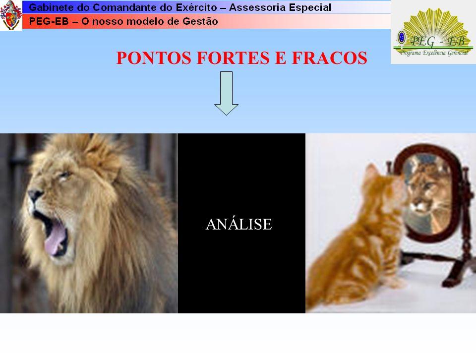PONTOS FORTES E FRACOS ANÁLISE