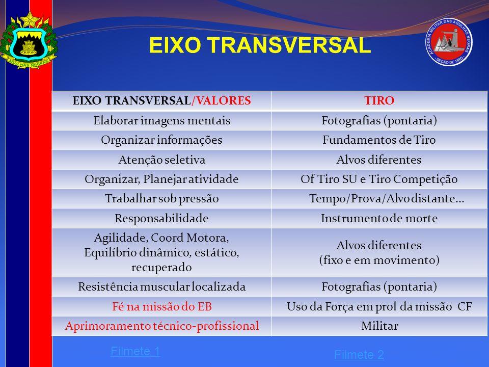 EIXO TRANSVERSAL/VALORES