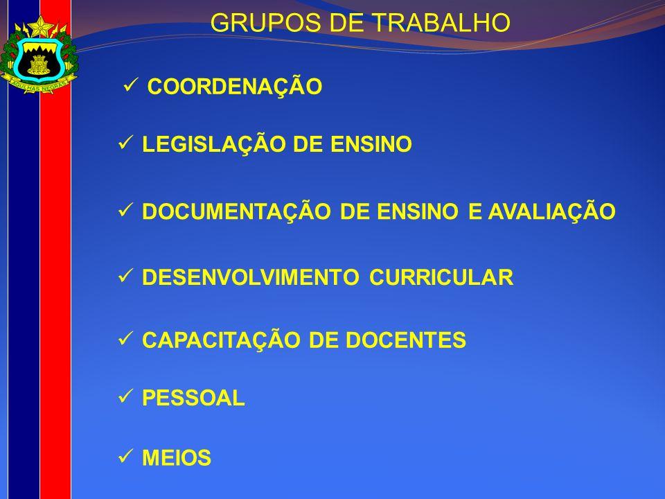 GRUPOS DE TRABALHO COORDENAÇÃO LEGISLAÇÃO DE ENSINO