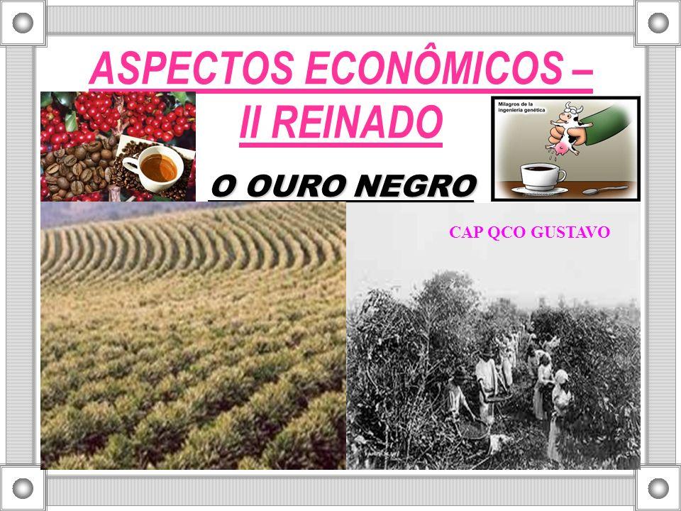 ASPECTOS ECONÔMICOS – II REINADO