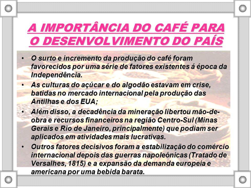 A IMPORTÂNCIA DO CAFÉ PARA O DESENVOLVIMENTO DO PAÍS
