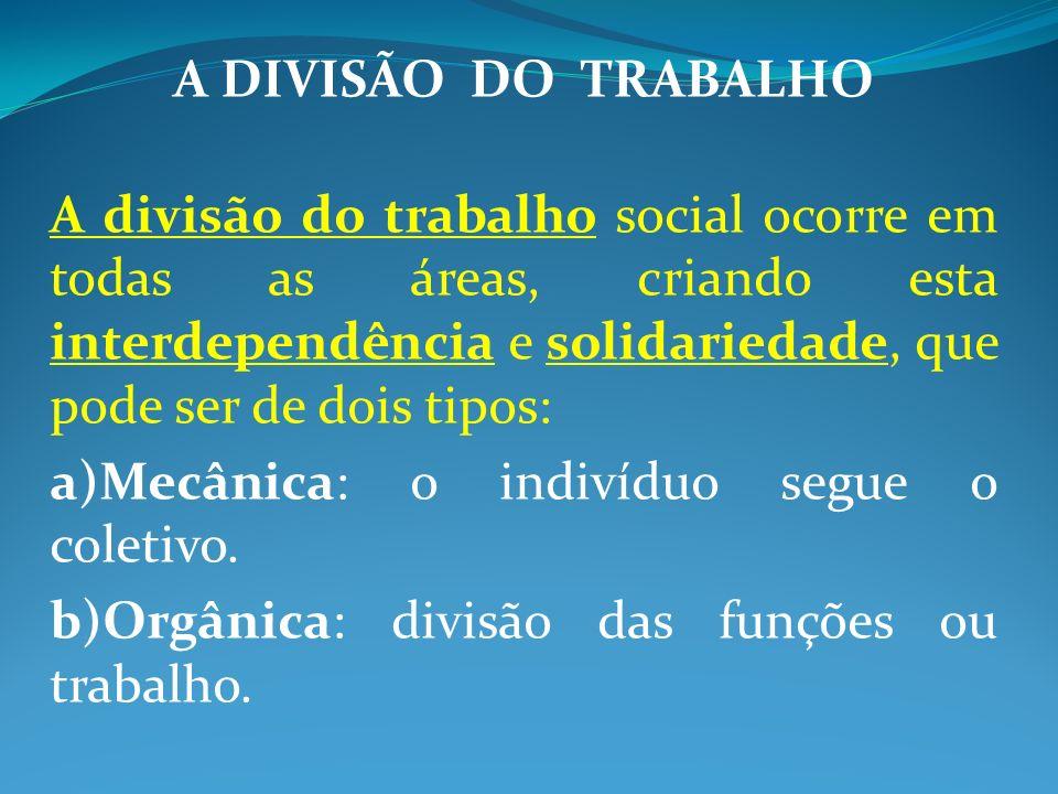 A DIVISÃO DO TRABALHO