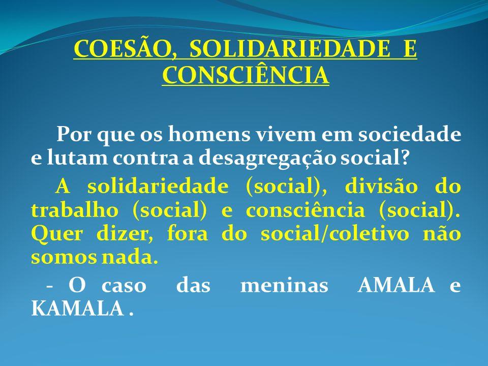 COESÃO, SOLIDARIEDADE E CONSCIÊNCIA