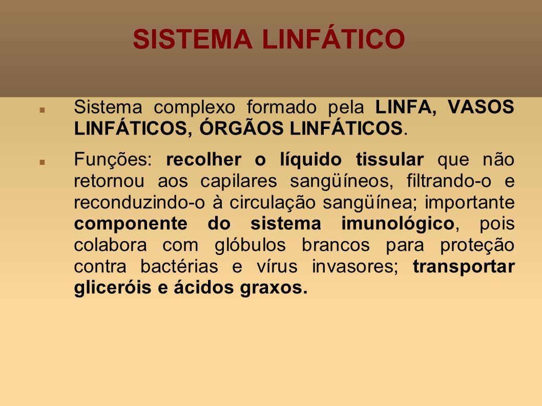 SISTEMA LINFÁTICO Sistema complexo formado pela LINFA, VASOS LINFÁTICOS, ÓRGÃOS LINFÁTICOS.