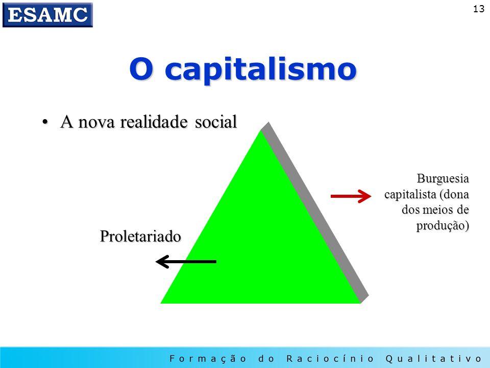 O capitalismo A nova realidade social Proletariado