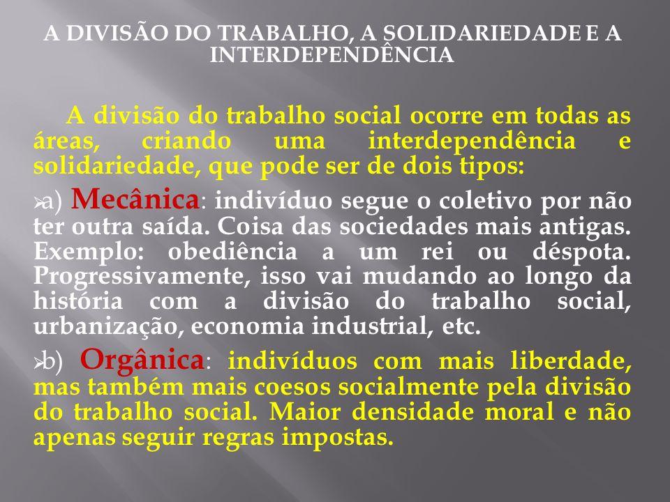 A DIVISÃO DO TRABALHO, A SOLIDARIEDADE E A INTERDEPENDÊNCIA