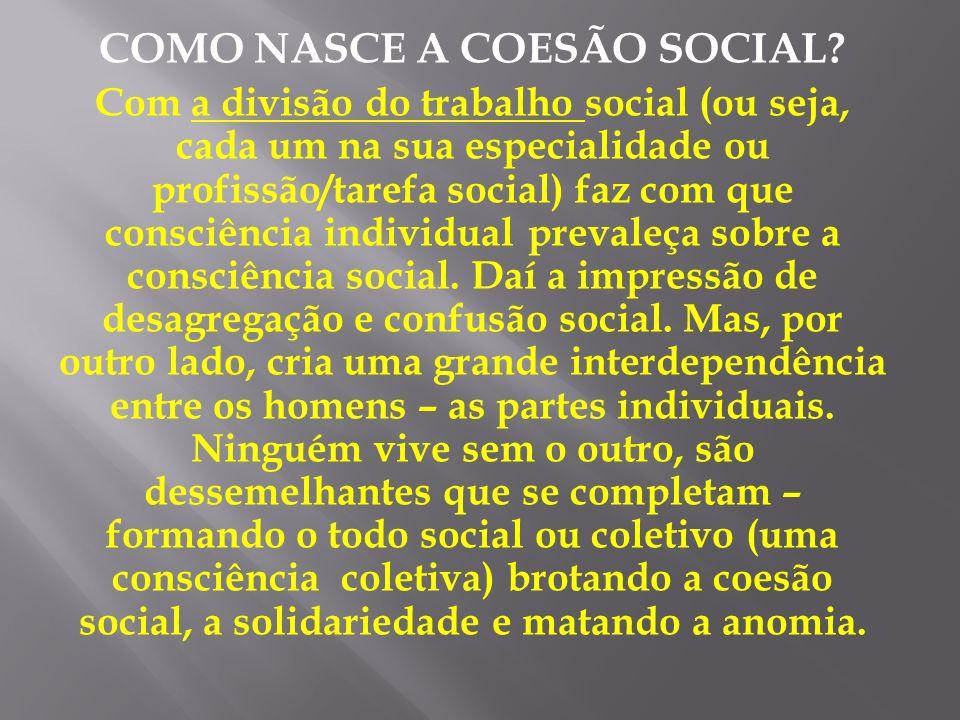 COMO NASCE A COESÃO SOCIAL