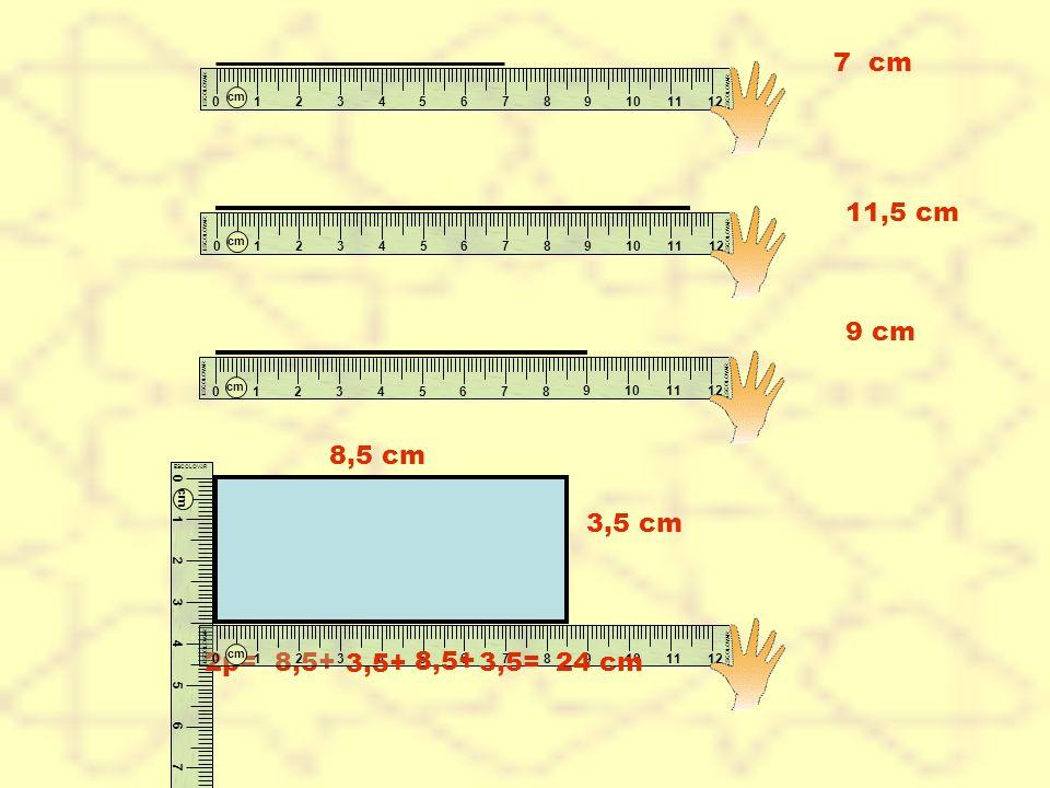 7 cm cm. 1. 2. 3. 4. 5. 6. 7. 8. ESCOLOVAR. 9. 10. 11. 12. 11,5 cm. cm. 1. 2. 3.
