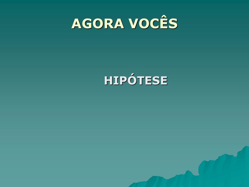 AGORA VOCÊS HIPÓTESE