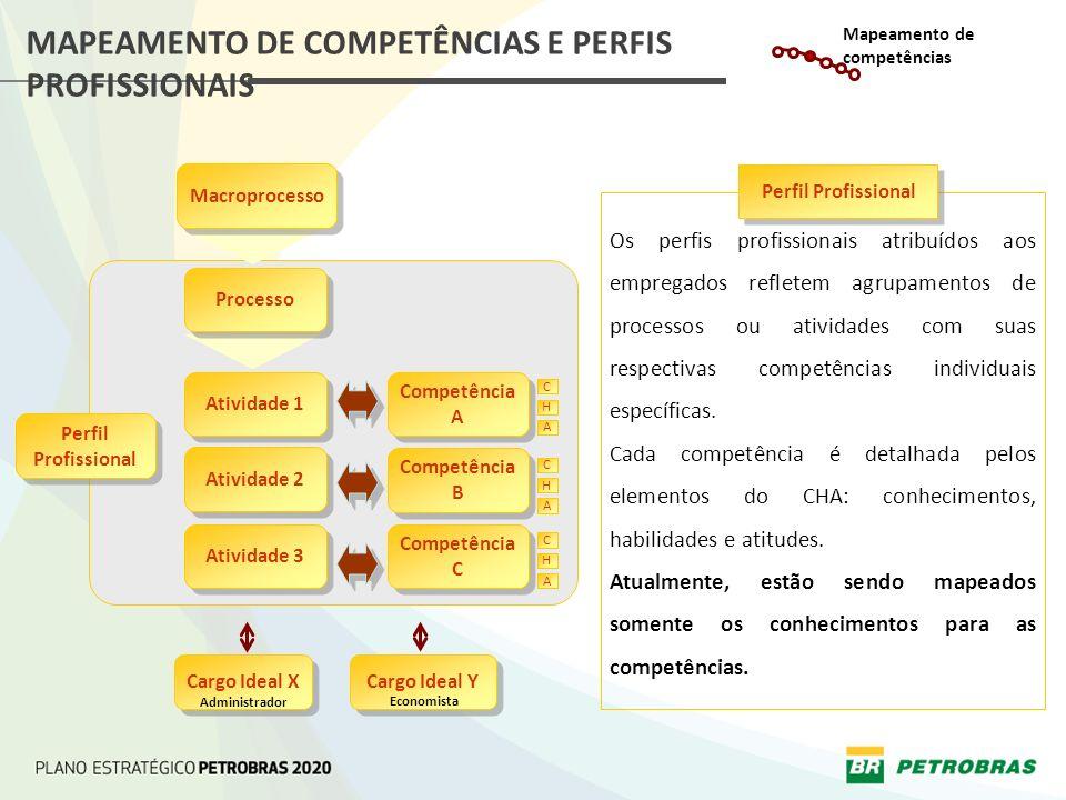 MAPEAMENTO DE COMPETÊNCIAS E PERFIS PROFISSIONAIS