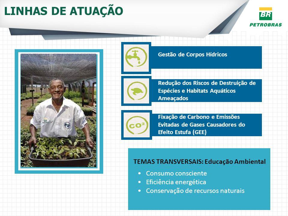 LINHAS DE ATUAÇÃO TEMAS TRANSVERSAIS: Educação Ambiental