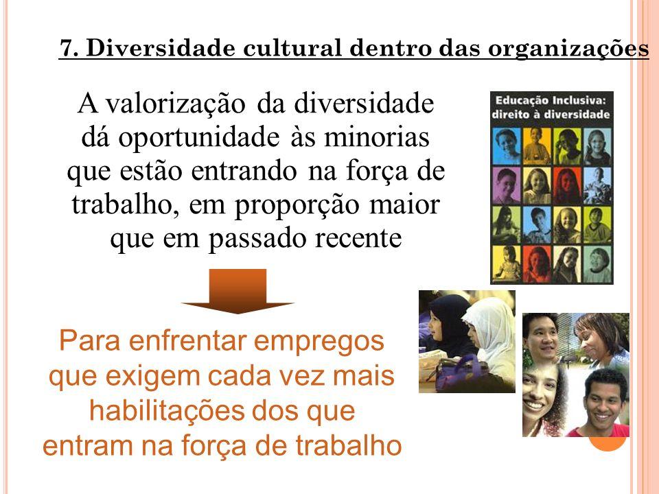 7. Diversidade cultural dentro das organizações