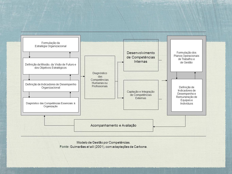 Desenvolvimento de Competências Internas