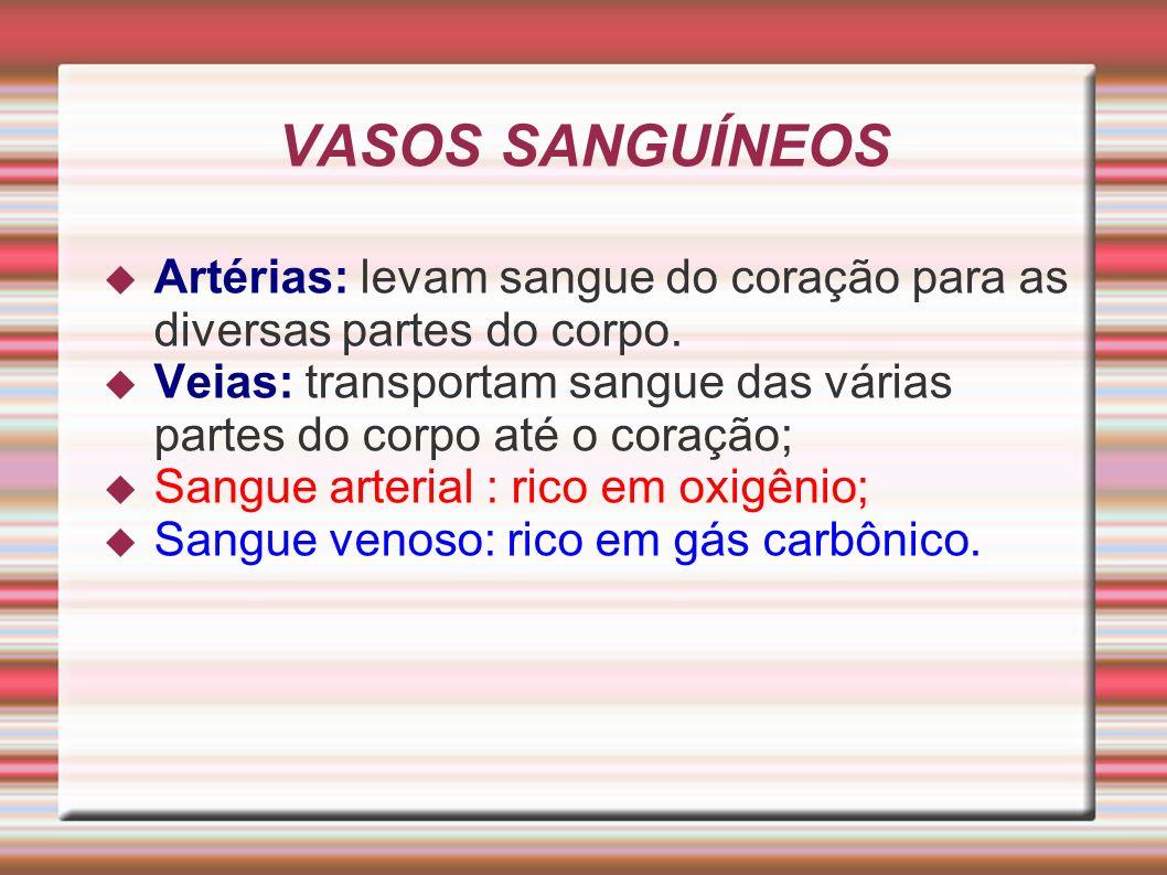 VASOS SANGUÍNEOS Artérias: levam sangue do coração para as diversas partes do corpo.