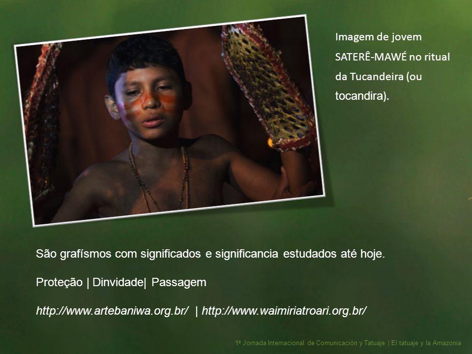 Imagem de jovem SATERÊ-MAWÉ no ritual da Tucandeira (ou tocandira).