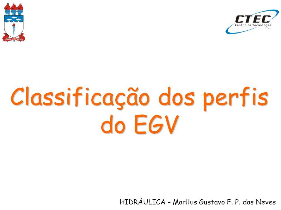 Classificação dos perfis do EGV