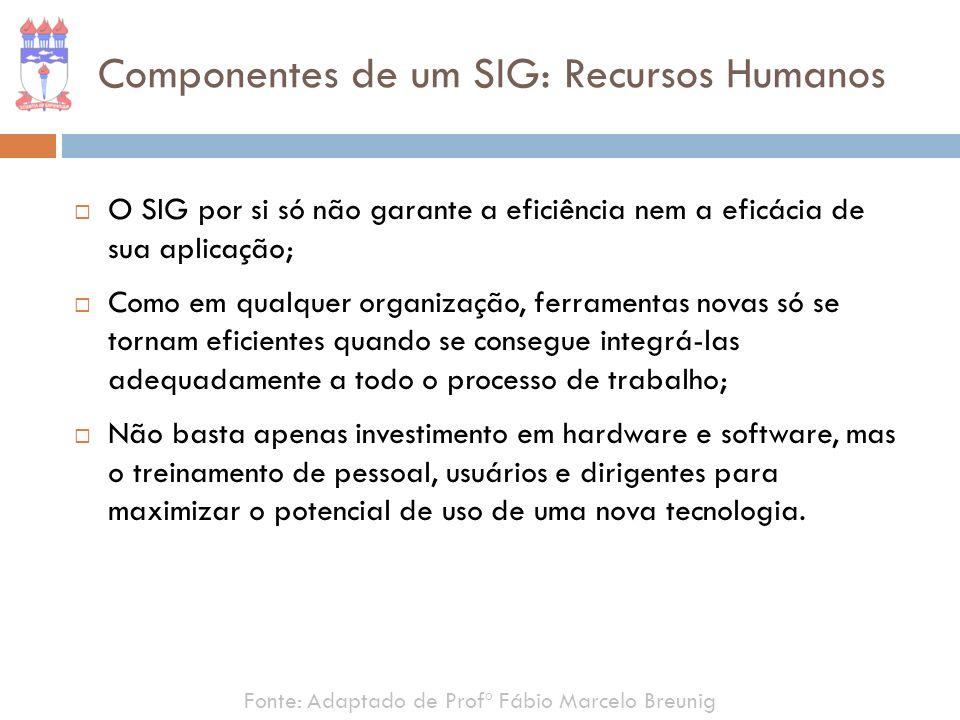 Componentes de um SIG: Recursos Humanos