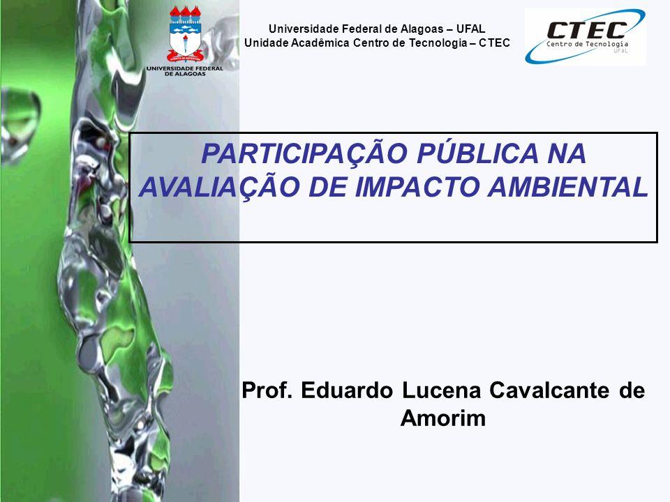PARTICIPAÇÃO PÚBLICA NA AVALIAÇÃO DE IMPACTO AMBIENTAL