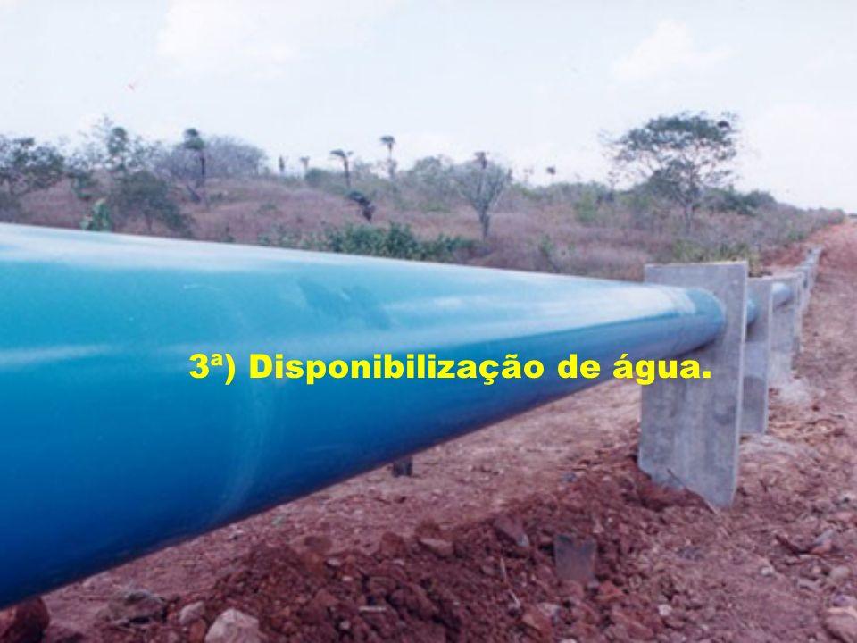 3ª) Disponibilização de água.