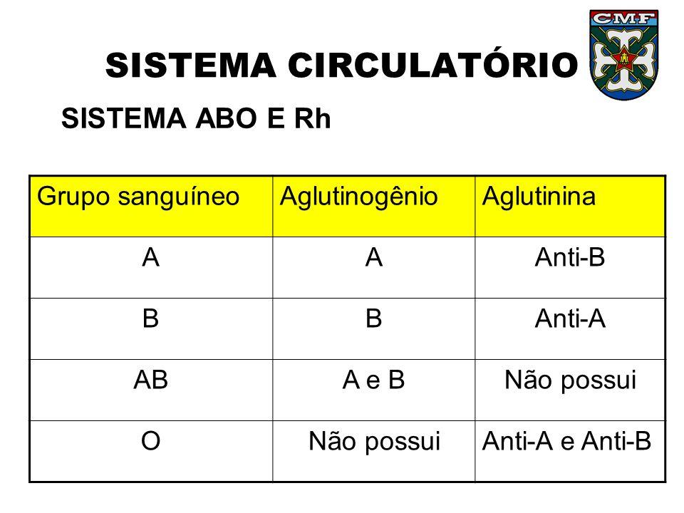 SISTEMA CIRCULATÓRIO SISTEMA ABO E Rh Grupo sanguíneo Aglutinogênio