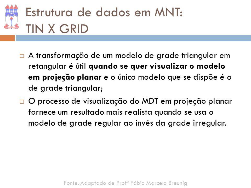Estrutura de dados em MNT: TIN X GRID