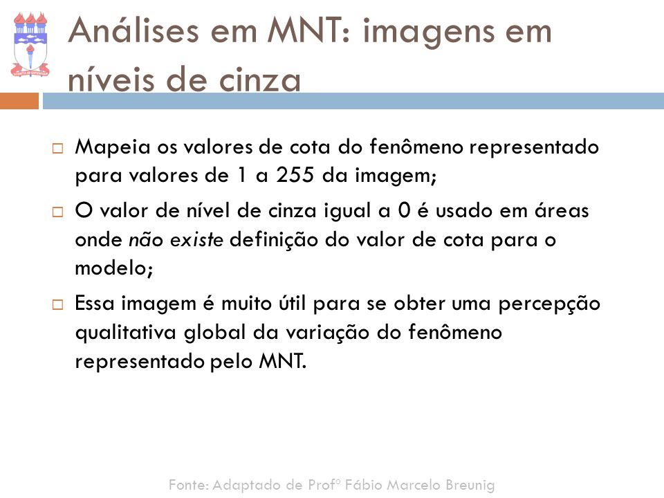 Análises em MNT: imagens em níveis de cinza