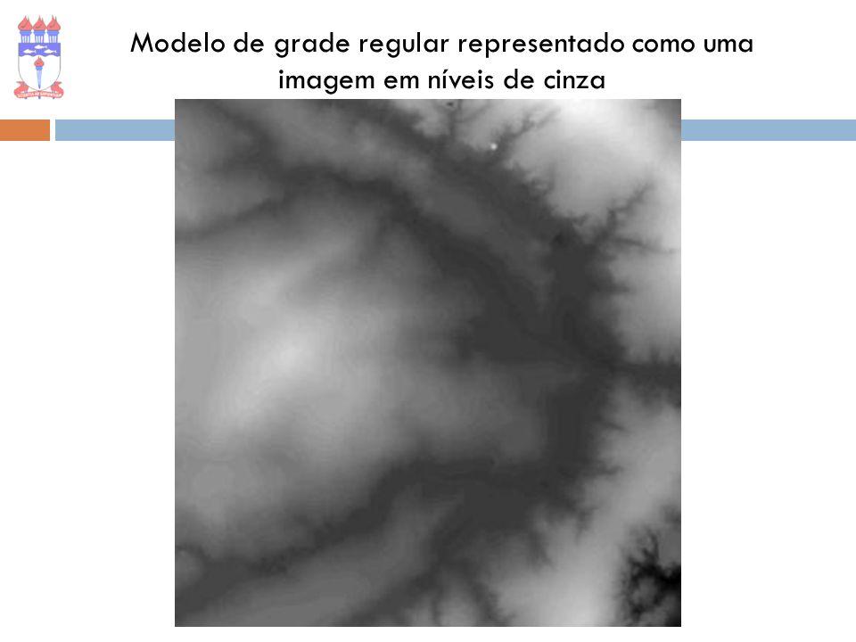 Modelo de grade regular representado como uma imagem em níveis de cinza