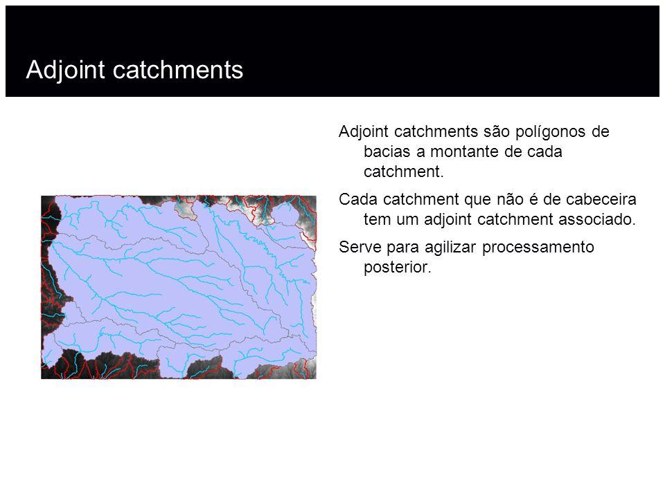 Adjoint catchmentsAdjoint catchments são polígonos de bacias a montante de cada catchment.