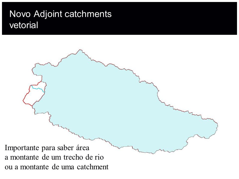 Novo Adjoint catchments vetorial