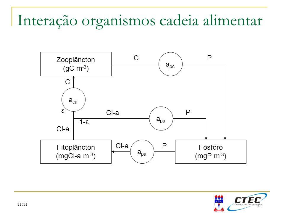 Interação organismos cadeia alimentar