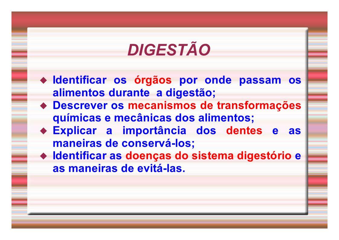 DIGESTÃO Identificar os órgãos por onde passam os alimentos durante a digestão;