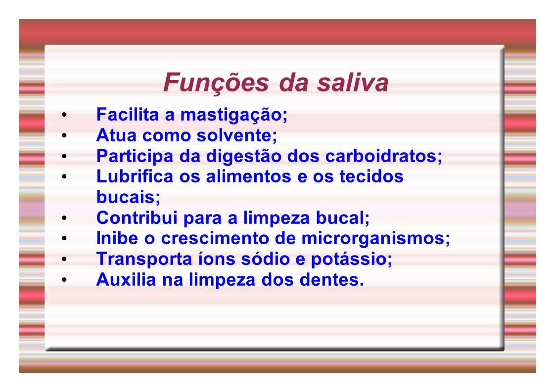 Funções da saliva Facilita a mastigação; Atua como solvente;