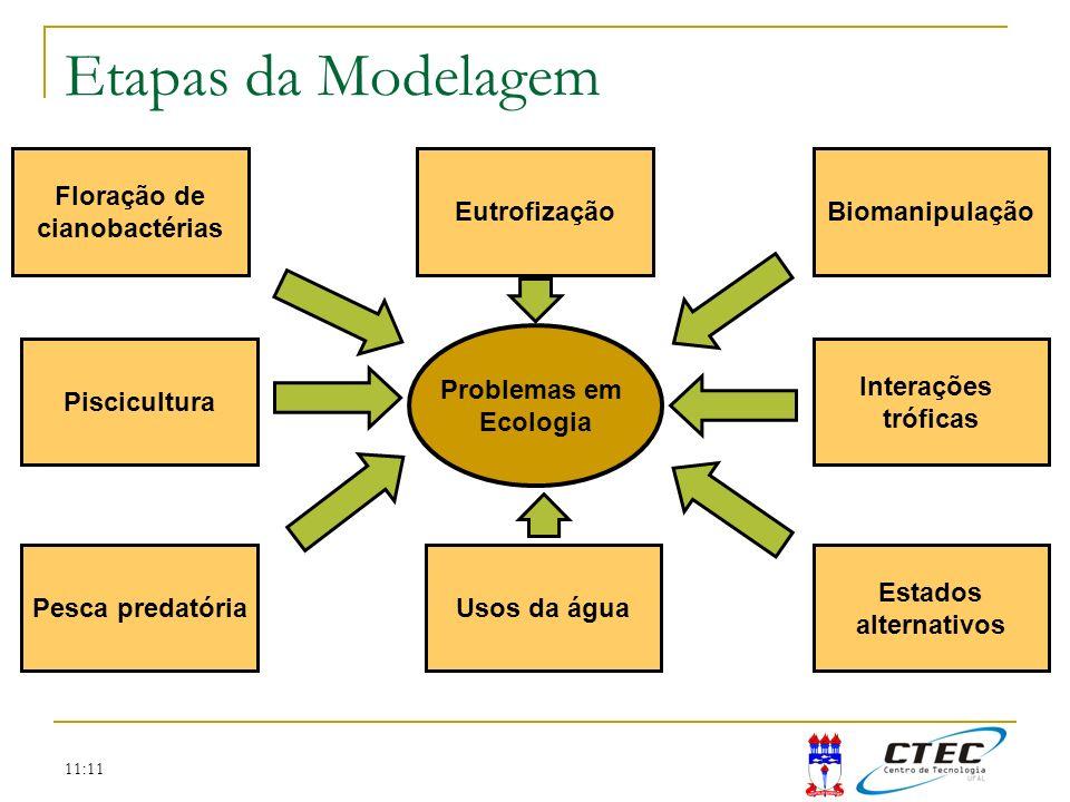 Etapas da Modelagem Floração de cianobactérias Eutrofização