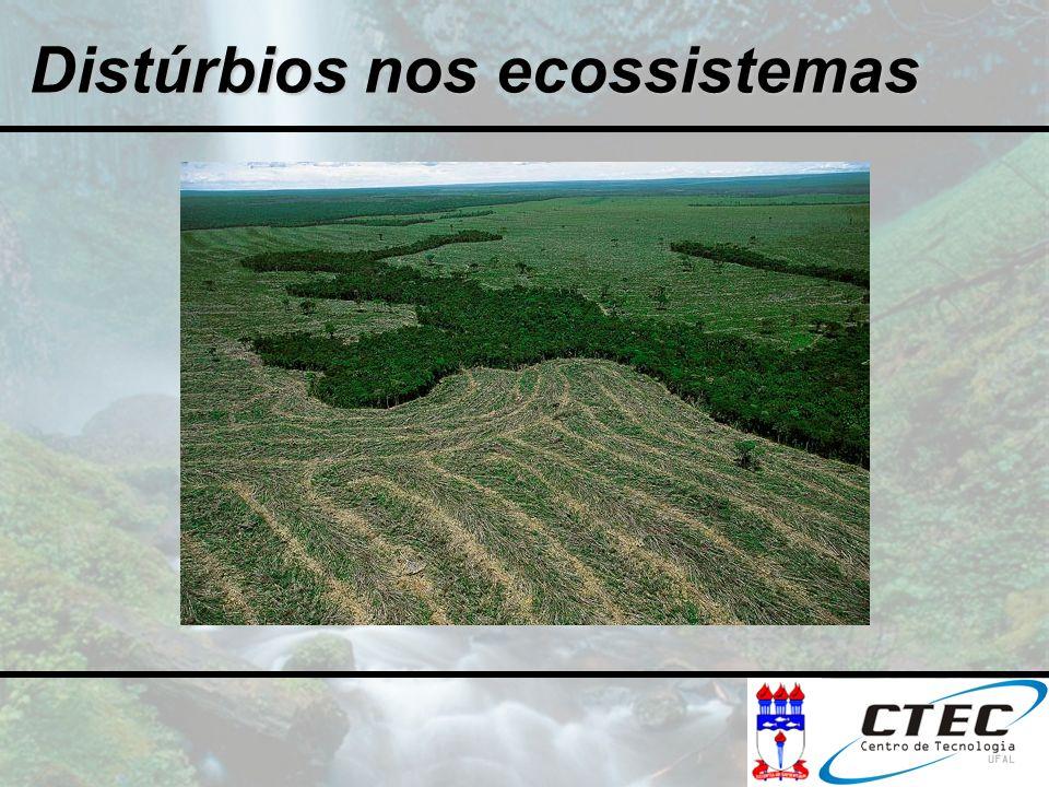 Distúrbios nos ecossistemas