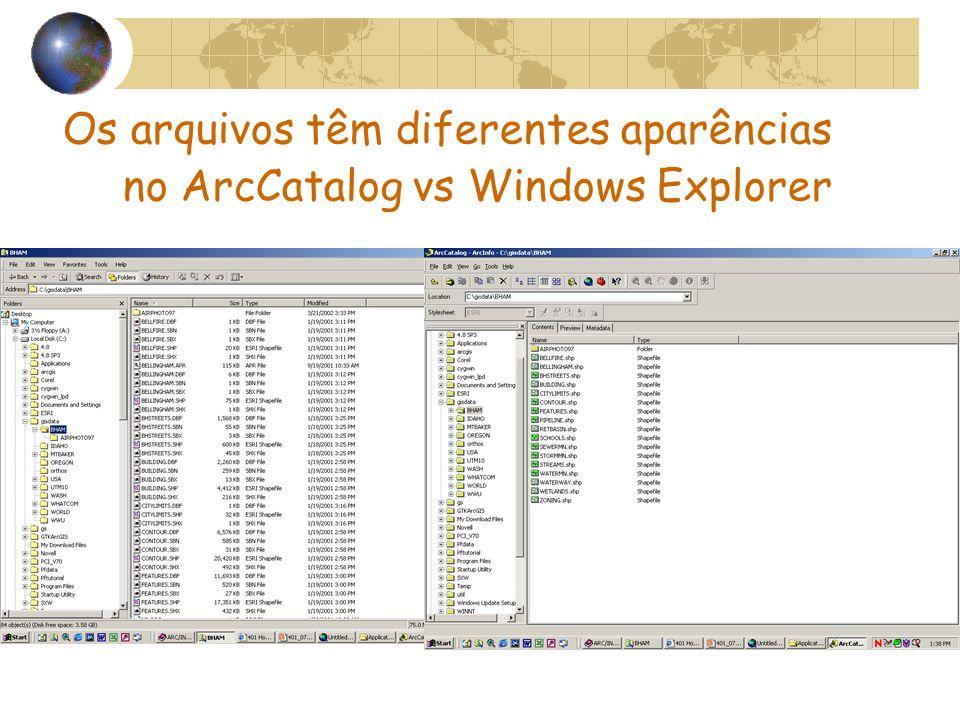 Os arquivos têm diferentes aparências no ArcCatalog vs Windows Explorer