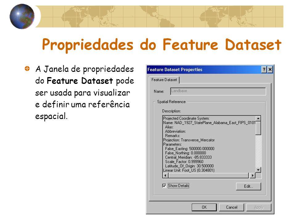 Propriedades do Feature Dataset