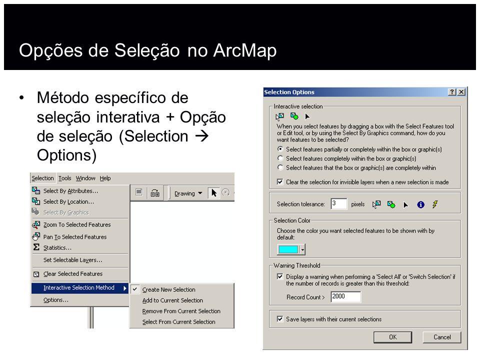 Opções de Seleção no ArcMap